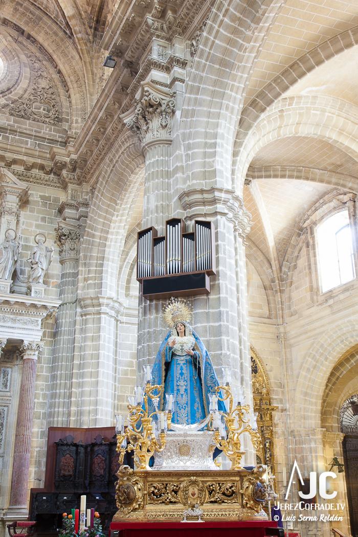 perpetuo socorro catedral-3523
